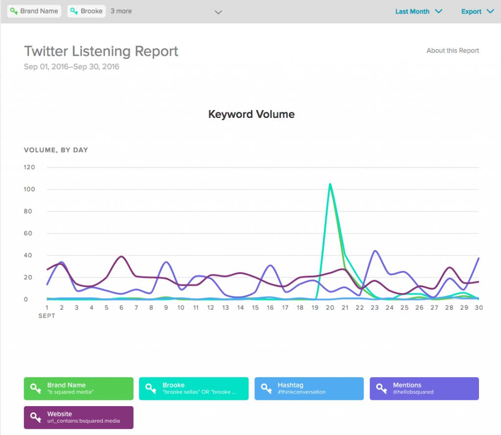ss-twitter-listening-report