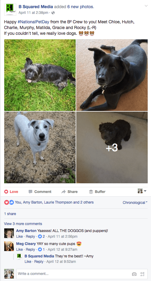 FB-national-pet-day-example