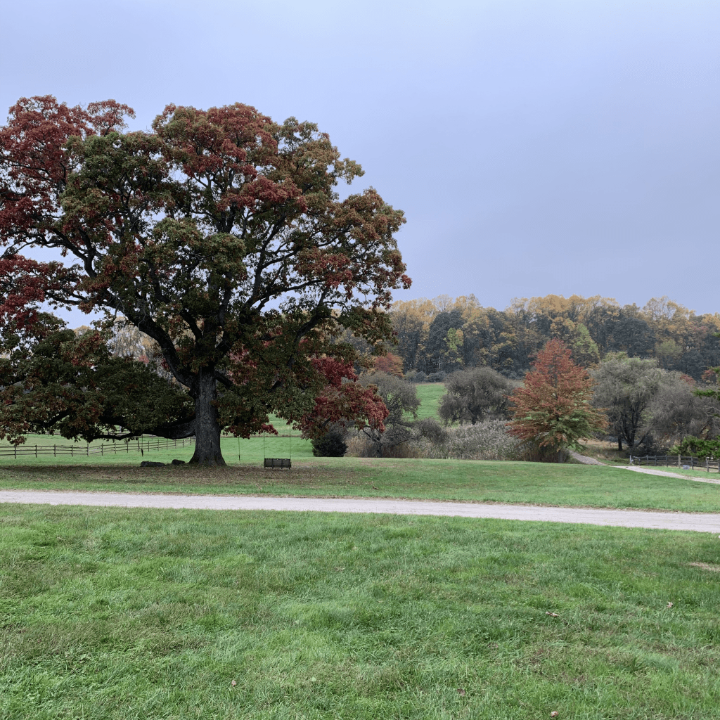valley-crest-stables-NJ